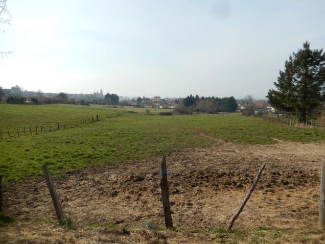 11325 terrains constructibles haut de Feurs